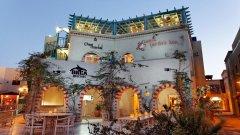Отель Turtle's Inn El Gouna 3*