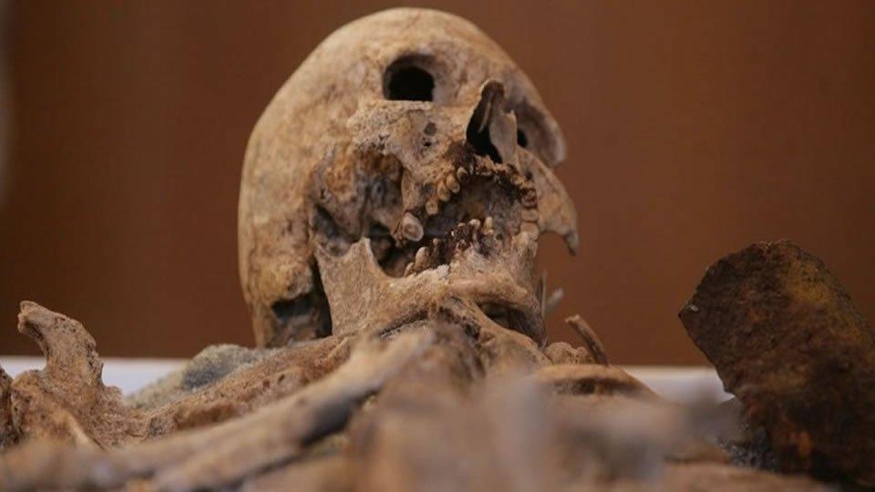 Самой популярной среди туристов в 2014 году достопримечательностью Созополя стал скелет так называемого «созопольского вампира»