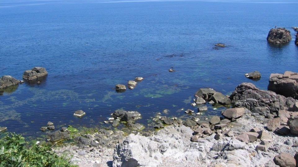 Доходы Болгарии от туризма могут упасть из-за санкций против России