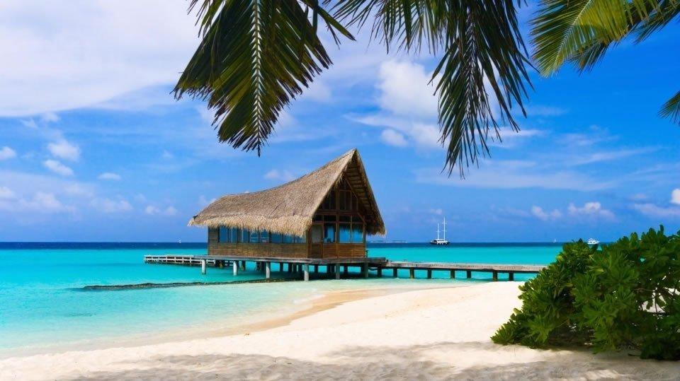 Остров Кохала на Гавайях с белоснежным песком прозрачным морем и зелеными пальмами