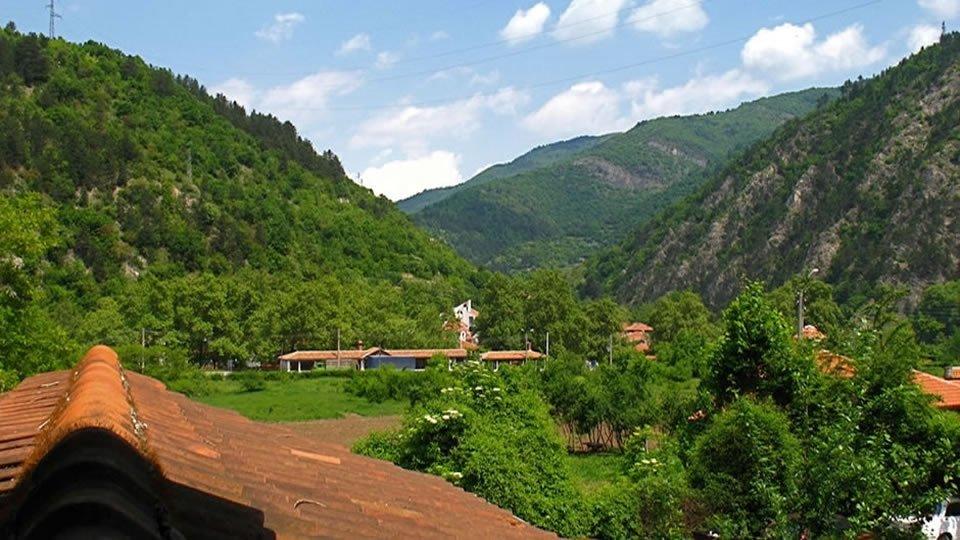 Бачковский монастырь вид из окна
