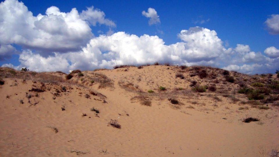Песчаные дюны в Несебре, Болгария
