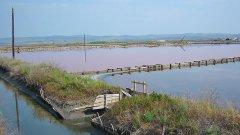 Бассейны с лечебной грязью